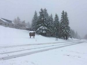 Schwarzwald 11.11.17